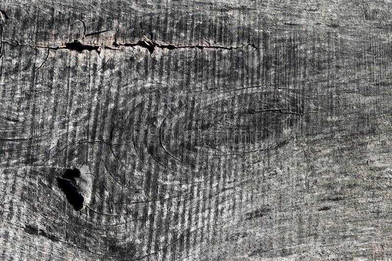 木五谷QUTH灰色特写镜头看了标记 免版税库存照片