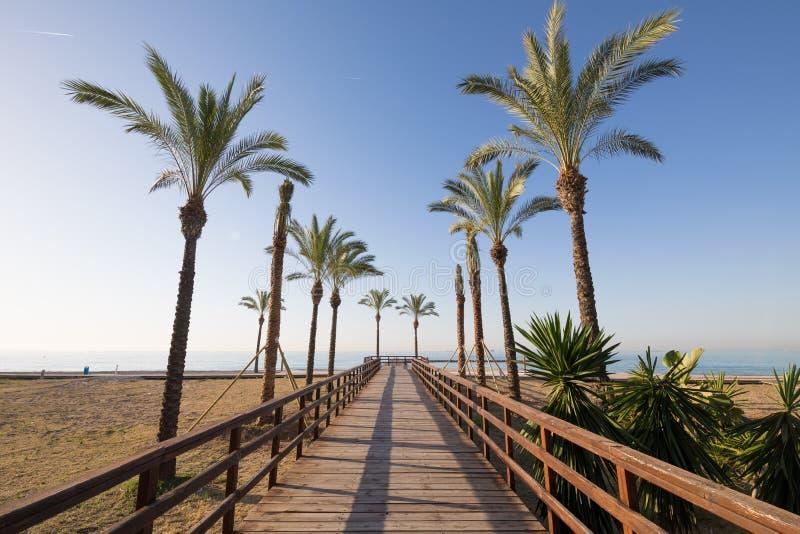 木人行道和棕榈树在Benicassim海滩  图库摄影