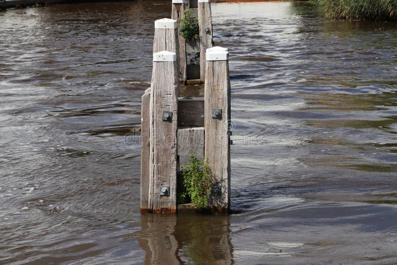 木停泊的岗位在Lemstervaart的水中在荷兰 免版税库存照片