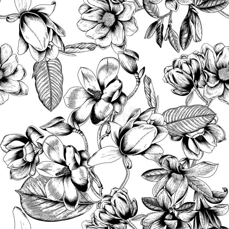 木兰 花 背景开花无缝的向量 bossies 春天 开花的结构树 菜样式 庭院 皇族释放例证