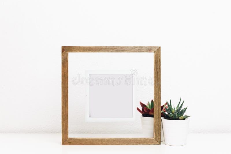 木制框架嘲笑与多汁植物罐 免版税库存照片