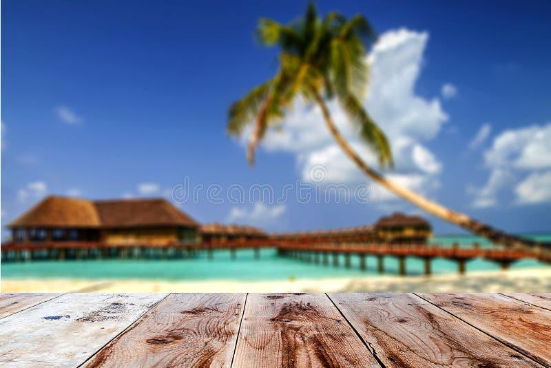 木前面的组合与被弄脏的热带海岛backgro 免版税库存图片