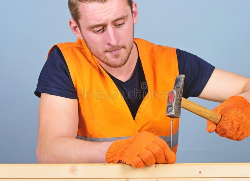 木匠,锤击钉子的被集中的面孔的木工入木板 人,杂物工明亮的背心的和防护 库存图片