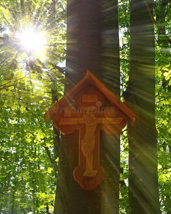 木十字架在森林里 免版税库存图片