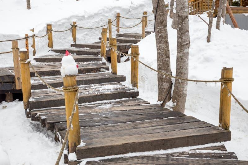 木台阶和扶手栏杆在陡峭的山坡 免版税库存图片