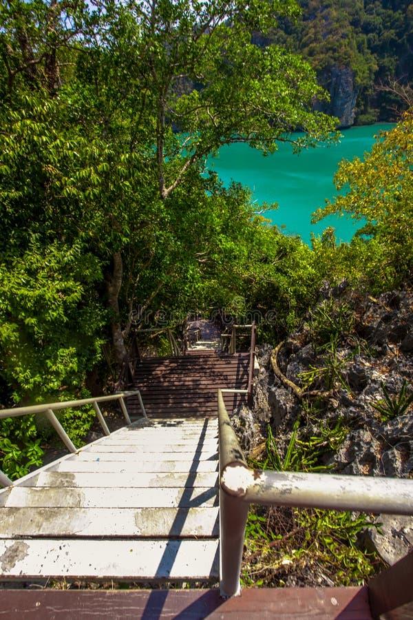 木台阶临近绿色盐水湖 免版税库存图片