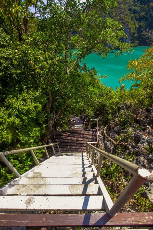 木台阶临近绿色盐水湖 库存图片