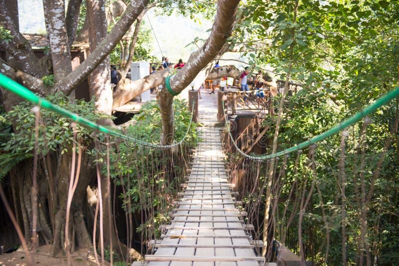 木吊桥在森林里 库存照片