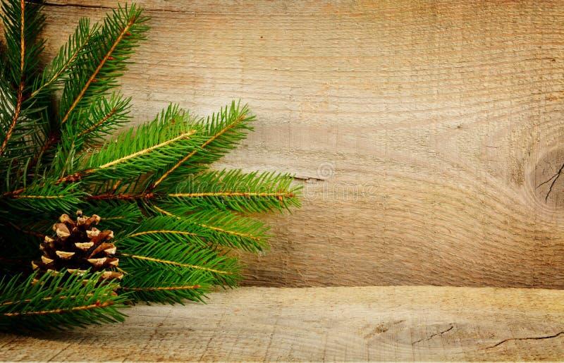 木圣诞节背景冷杉云杉锥体 免版税图库摄影