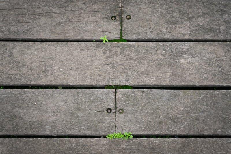 木地垫和绿草 免版税库存图片