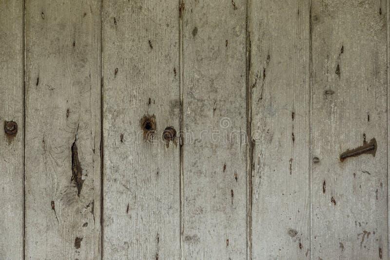 木墙壁纹理 伟大为您的设计和纹理背景 r 库存照片