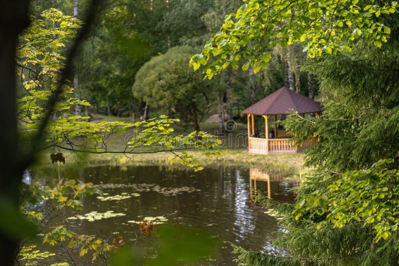 木夏天庭院议院的五颜六色的照片在一个公园,在有被弄脏的草茎的森林之间在前景-晴朗的秋天 图库摄影