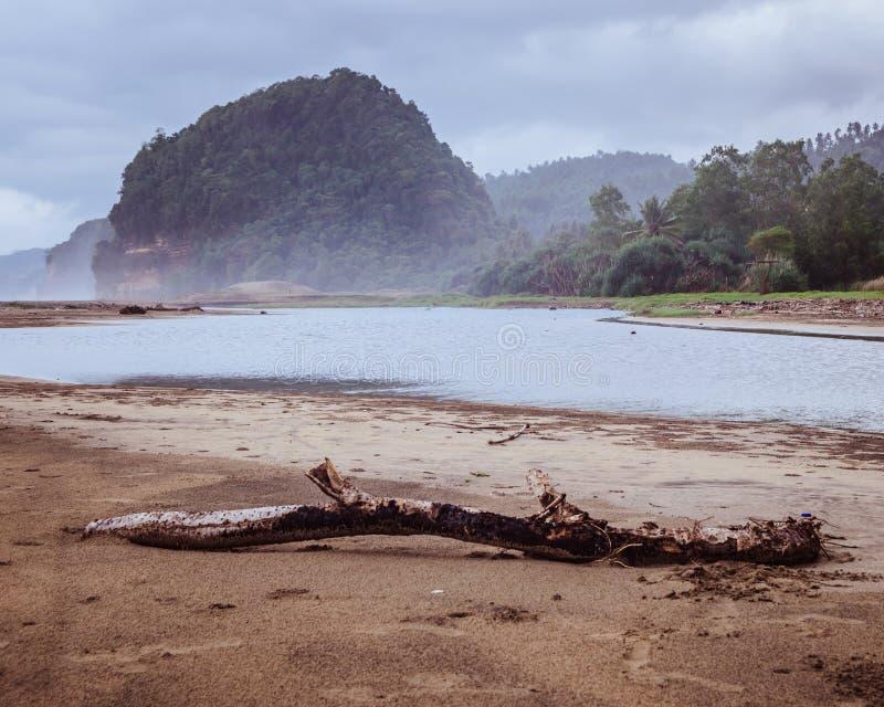木头、沙子、水和巨大的岩石在距离 免版税库存图片