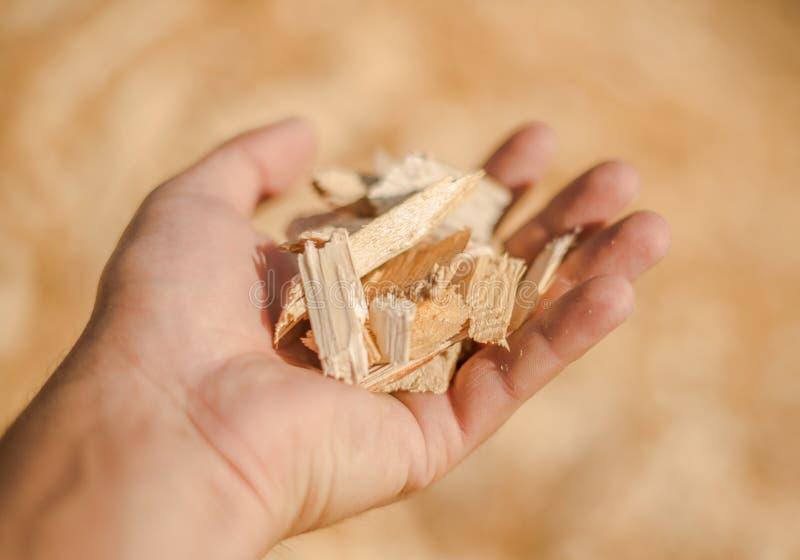木头在他的手上 免版税库存照片