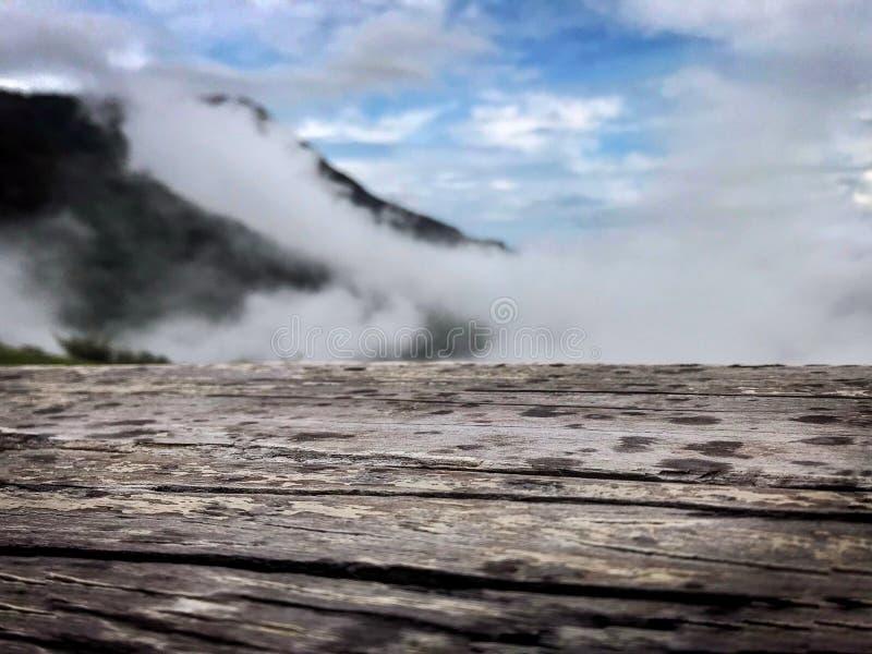 木头有山背景 免版税库存图片