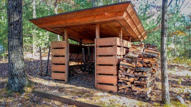 木头流洒了与切好的木头 免版税图库摄影