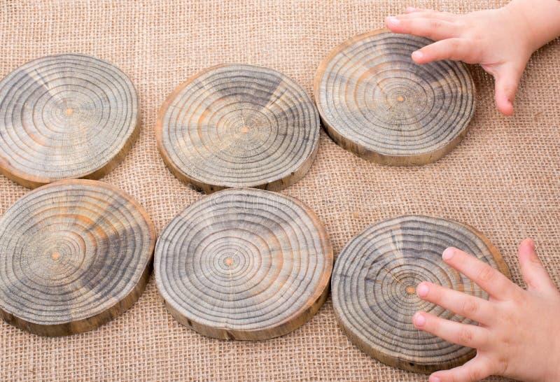 木头采伐在圆的稀薄的片断的裁减 免版税库存照片