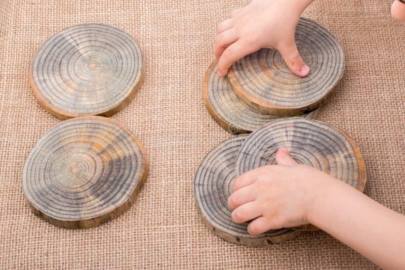 木头采伐在圆的稀薄的片断的裁减 免版税库存图片