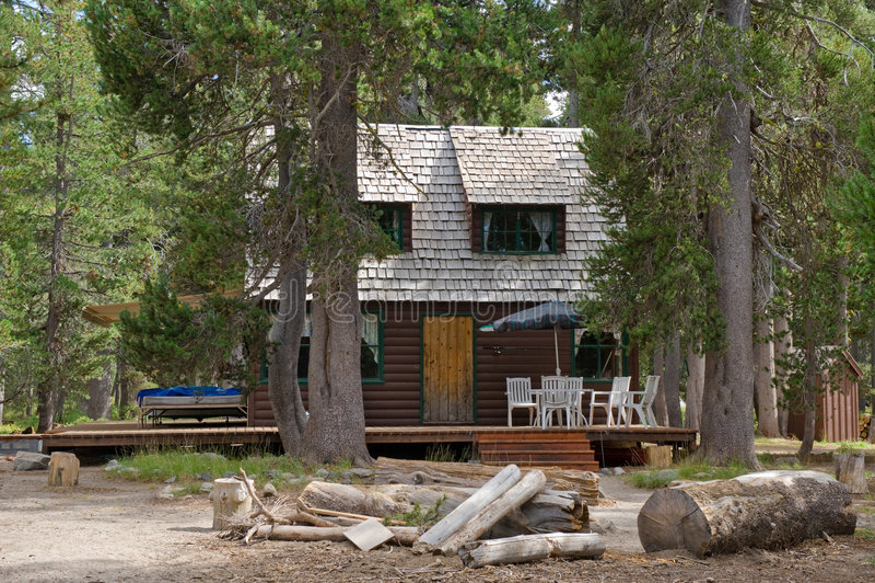 木客舱的森林 库存图片