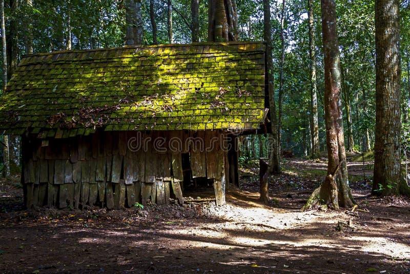木小屋在密林毁坏了 免版税库存照片