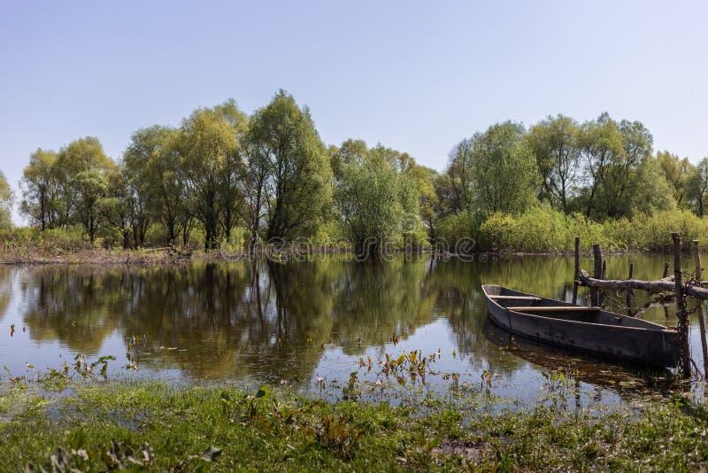 木小船在村庄地方在Desna河,乌克兰的洪泛区森林里 免版税库存图片