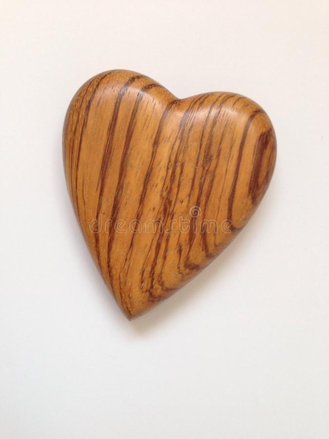 木心脏 库存照片