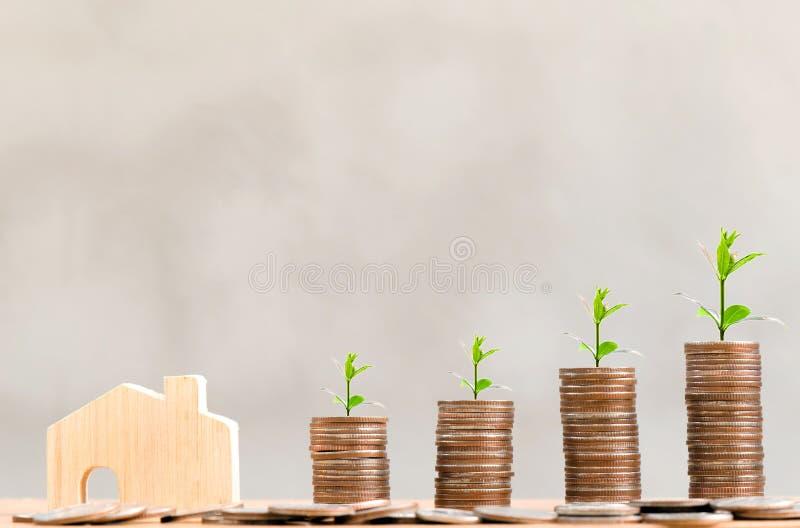 木房子模型和步与生长在上面的树的硬币堆、顶楼样式背景、金钱、储蓄和投资或者famil 免版税库存图片