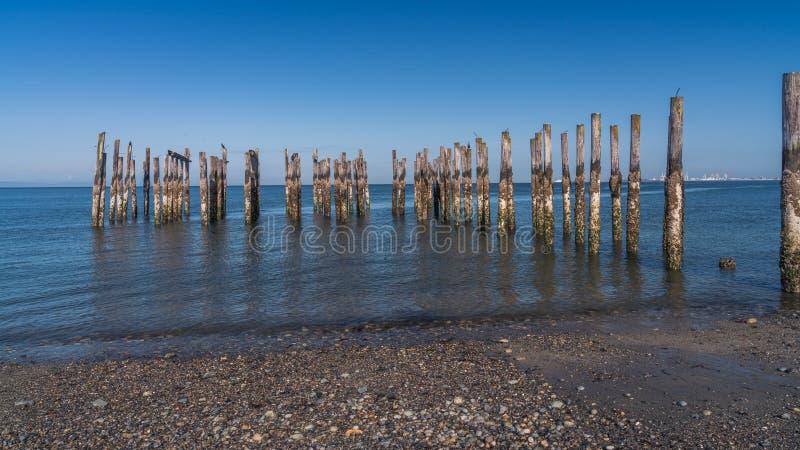木打桩有蓝天海景 免版税库存照片