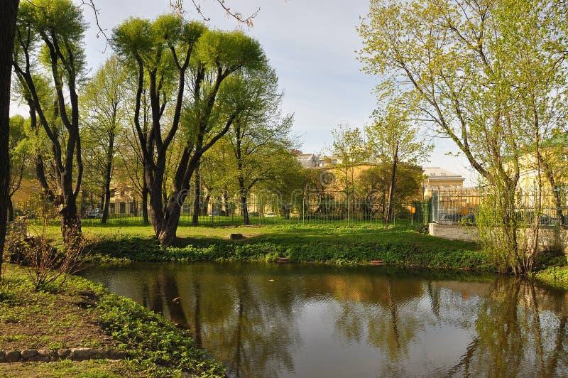 木掀动水镜子神色 夏天 热 绿叶 草 库存图片