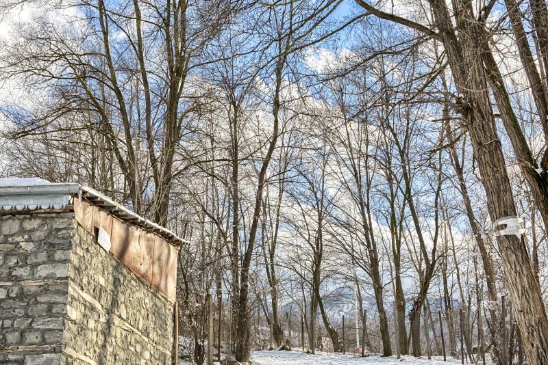 木教堂在北部一个多雪的森林的冬天 冬天在山村 免版税库存图片