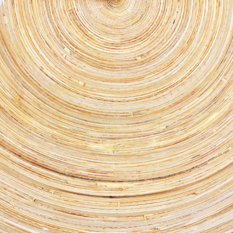木木材自然纹理 库存照片