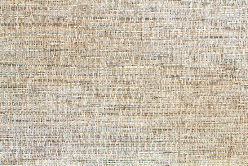 木木材自然纹理 库存图片
