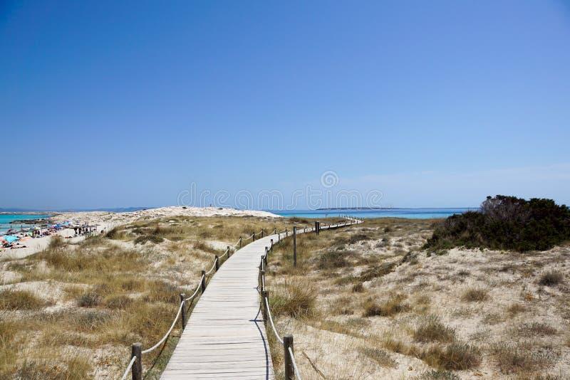木木板走道和绿松石浇灌在Illetes海滩在福门特拉岛 达成协议色greyed的区拜雷阿尔斯夹子包括海岛映射路径替补被遮蔽的状态周围的领土对植被 西班牙 免版税库存图片