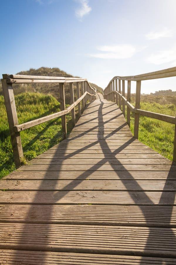 木木板走道在领域背景的晴天 免版税库存照片