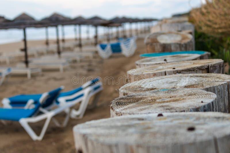木杆Cloesup,站立在海滩 免版税库存图片