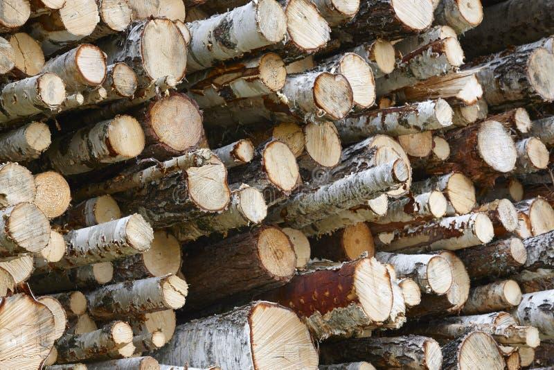 木材产业在芬兰 被堆积的桦树 自然backgrou 免版税图库摄影