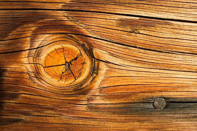 木材生节木结木材板条宏指令一个被烧的钉子 库存图片