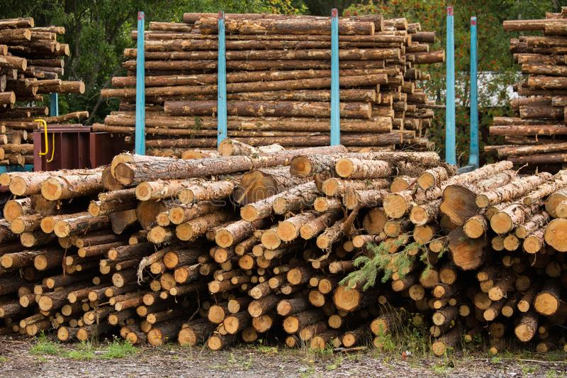 木材股票  库存图片
