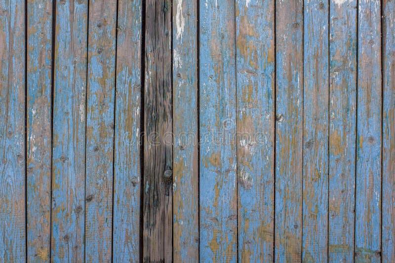木板条灰色黄色老篱芭墙壁与蓝色剥的油漆的和镇压和一个黑暗的委员会 r ?? 库存照片
