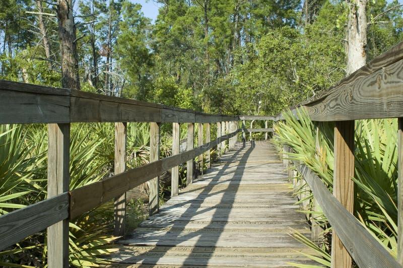 木板走道佛罗里达 免版税图库摄影