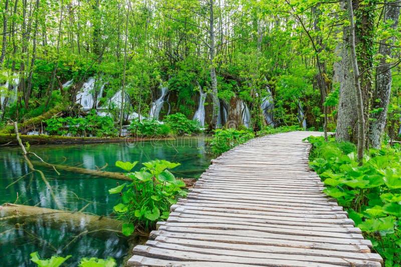 木板走道在公园Plitvice湖 库存照片