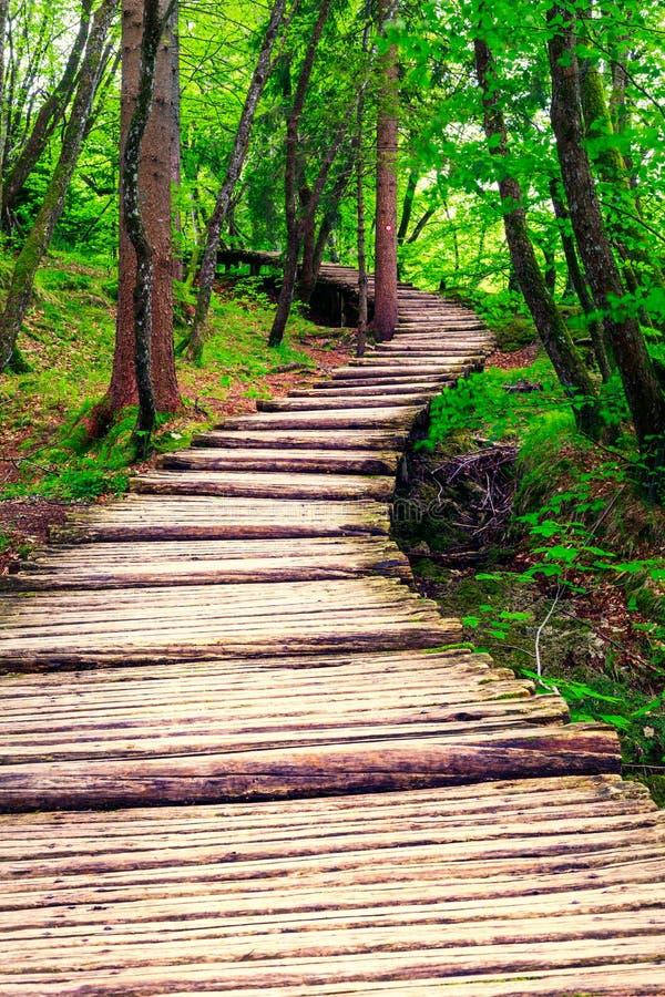 木板走道在公园Plitvice湖 免版税库存照片