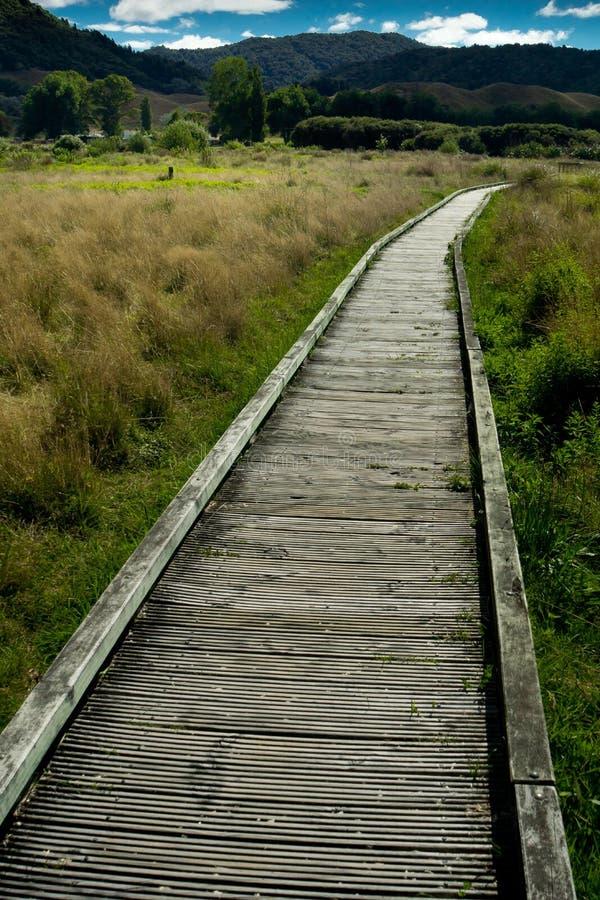 木板走道在新西兰 免版税库存图片