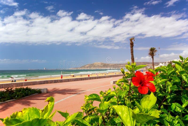 木板走道在阿加迪尔,摩洛哥 免版税库存图片