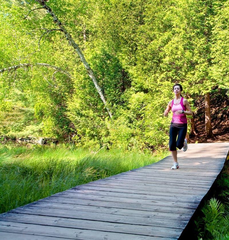 木板走道森林跑步的妇女 库存照片