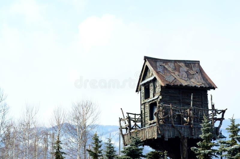 木树上小屋 免版税库存图片