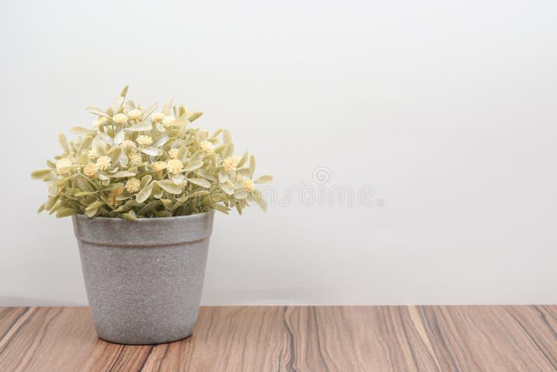 木桌上的假树和白色背景 图库摄影