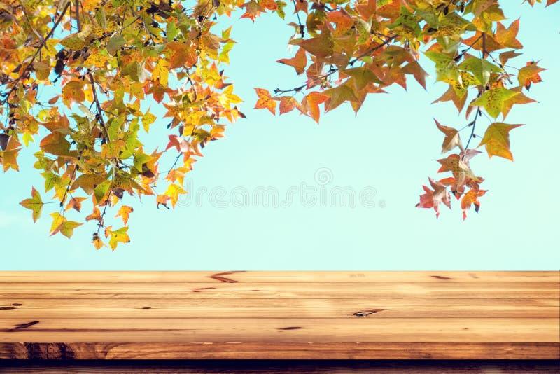 木桌上面与美丽的秋天槭树的在天空背景 库存照片