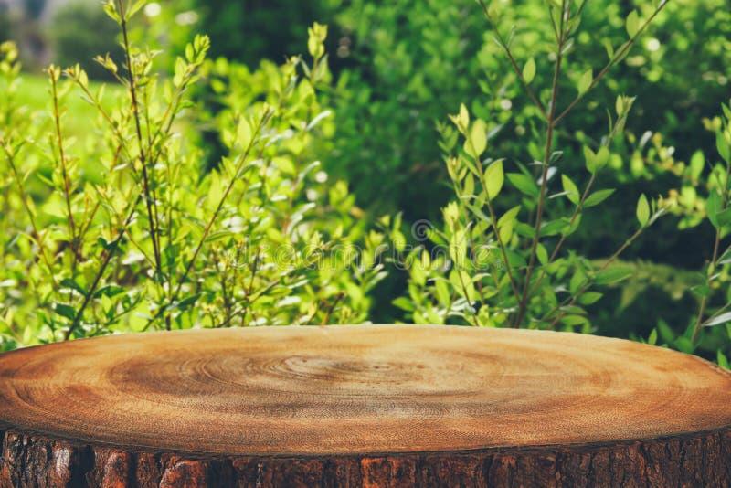 木桌的图象在前面绿色林木的使背景环境美化 对产品显示和介绍 图库摄影