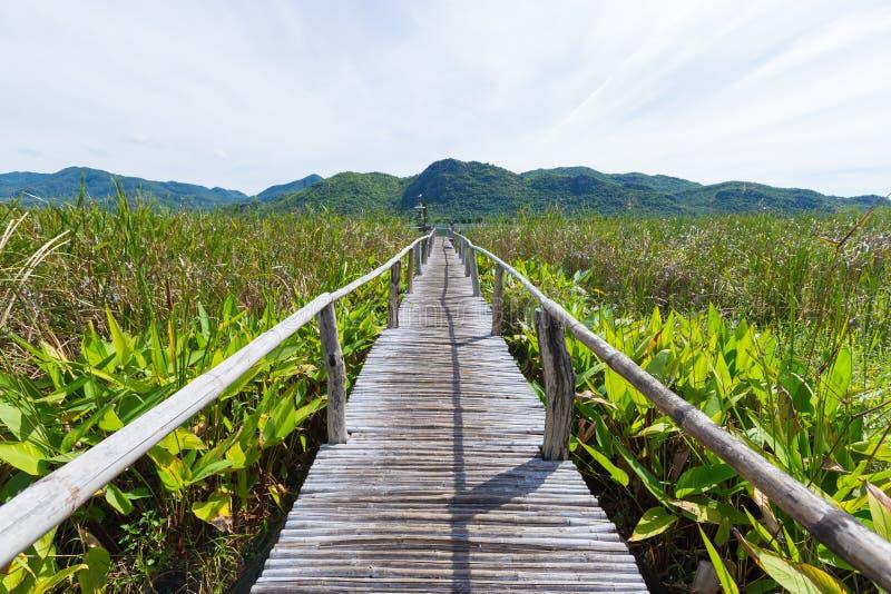 木桥和风景 免版税库存照片